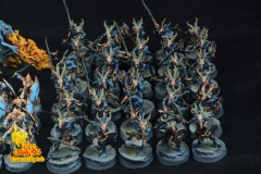 Tzeentch-Army-2-5